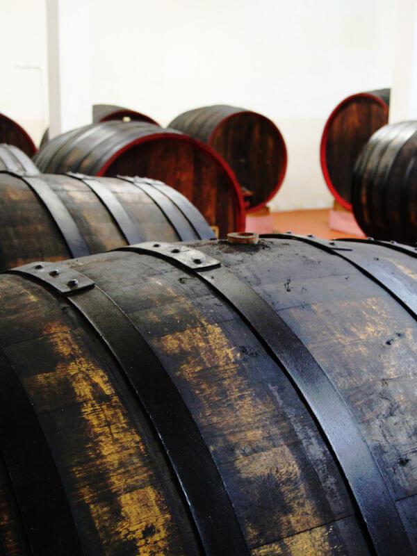 Old oak barrels in the cellar of Feudi di Guagnano in Puglia, Italy