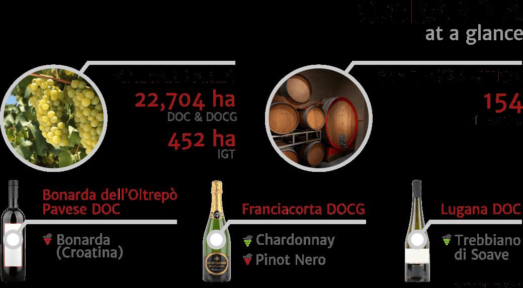 Inforgrapfics - key facts about Lombardia Italian wine region, 2018