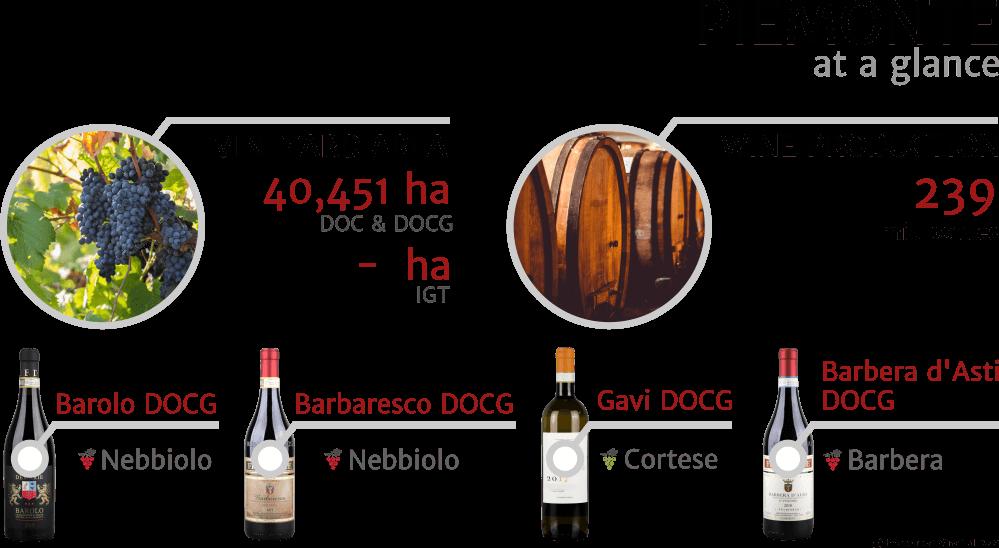 Inforgrapfics - key facts about Piedmont (Piemonte) Italian wine region, 2018