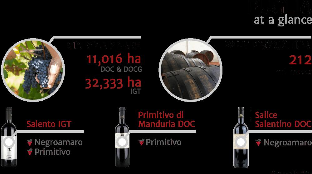 Inforgrapfics - key facts about Puglia, Italian wine region, 2018