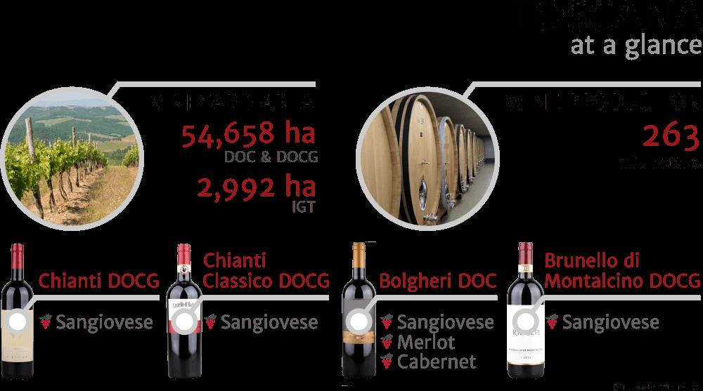 Inforgrapfics - key facts about Tuscany (Toscana) Italian wine region, 2018
