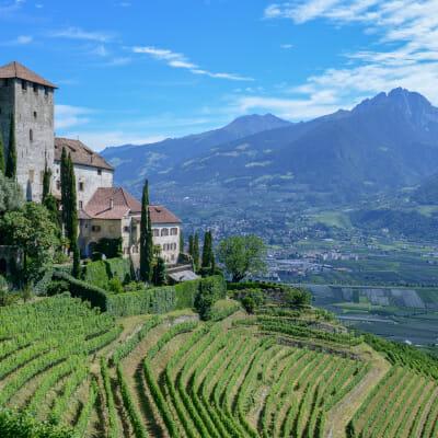 Alto Adige DOC