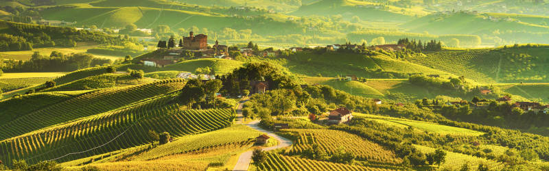 Castle of Grinzane Cavour in Barolo DOCG winemaking area in Piedmont, Italy