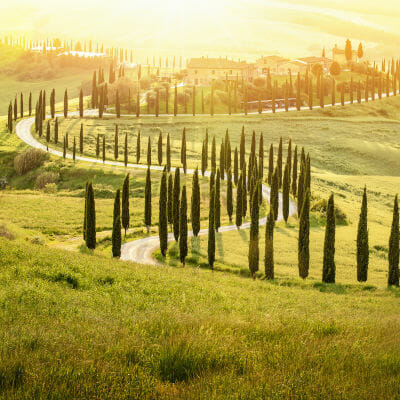 Landscape photo of road with cypress trees in Tuscany, Italy