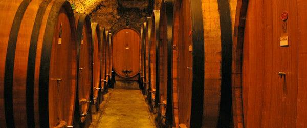 Cellar at La Castellina, in Palazzo Scuarcialupi, Chianti Classico Tuscany Italy