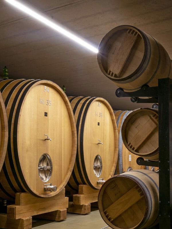 Cellar of Ridolfi - barriques and big oak barrels