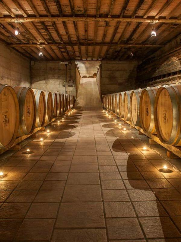 Cellar of Malvira, Roero, Piedmont, Italy