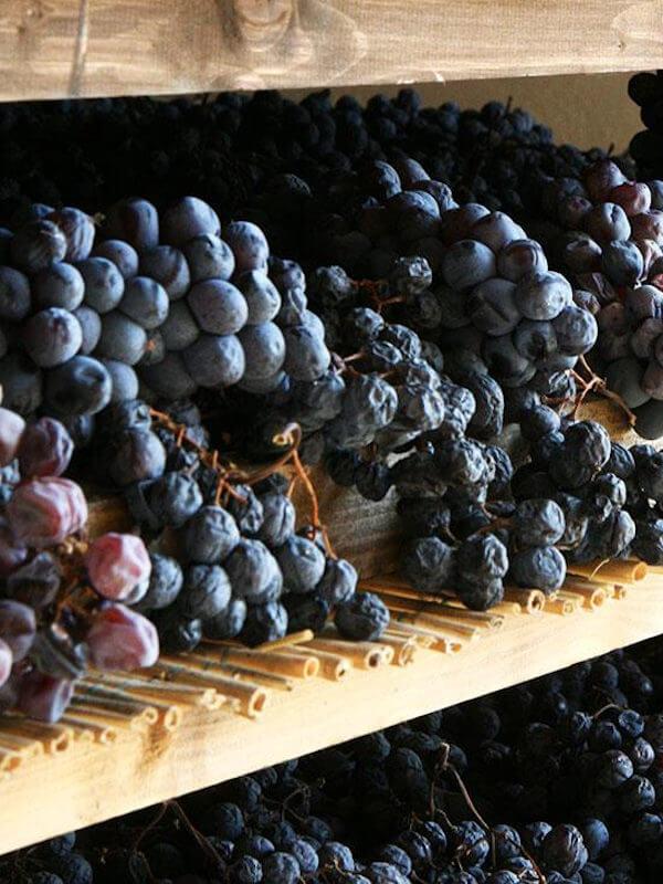 Rubinelli Vajol dried Corvina grapes to produce Amarone wine