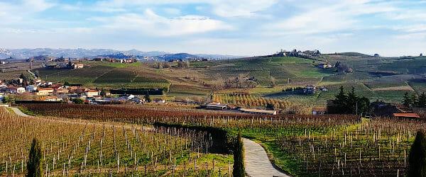 The vineyards of Scagliola in the hills of Monferrato in Piedmont