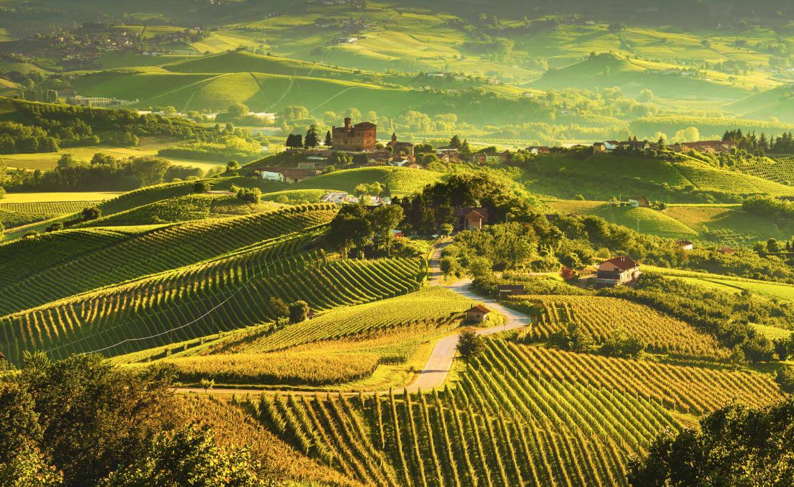 Vineyards around the Castle Ginzane Cavour, Barolo, Piedmont, Italy