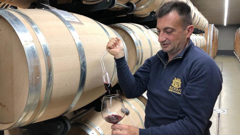 Winemaker Gianni Maccari sampling wine in the ageing room at Ridolfi winery in Brunello di Montalcino