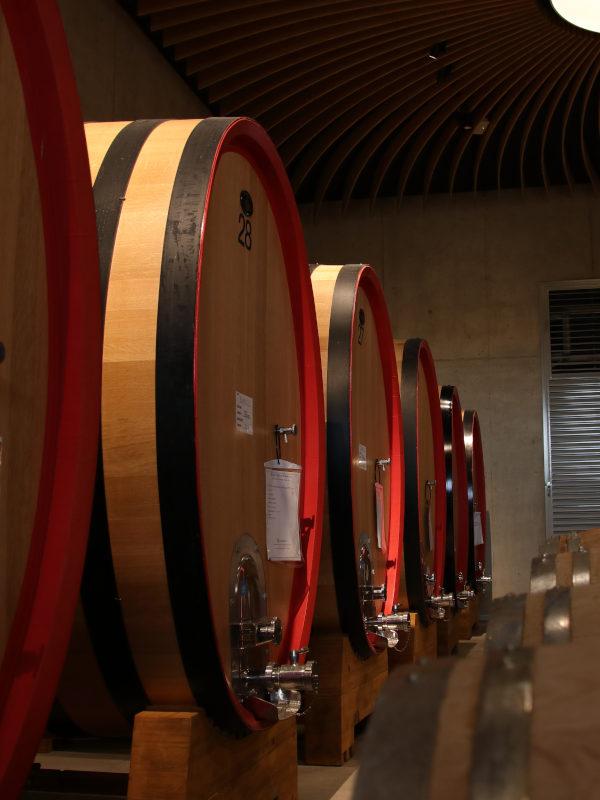 Oak ageing room in ForteMasso winery, Monforte d'Alba, Barolo DOCG