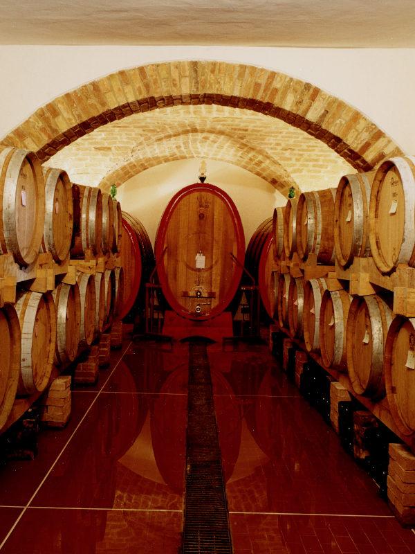 Wine Ageing cellar at the Orlandi Contucci Ponno winery, Montepulciano d'Abruzzo