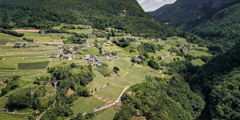 Glen Cru vineyards of Cantina Kurtatsch, Alto Adige DOC, Italy