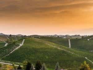 View of Roero DOCG wine producing region in Piedmont Italy