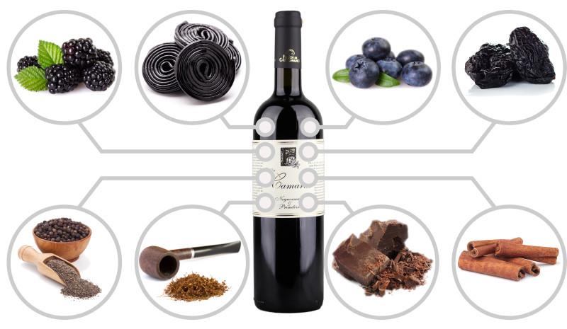 Flavours of Primitivo wine Salento IGT Puglia Italy