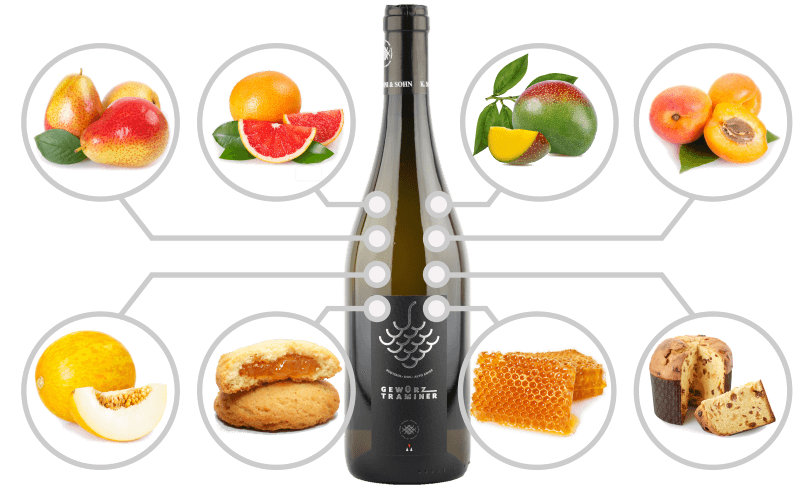 Infographics with typical flavours of Alto Adige DOC Gewurztraminer Wine