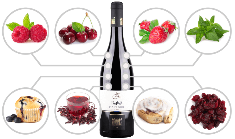 Infographics with typical flavours of Alto Adige DOC Pinot Noir wine
