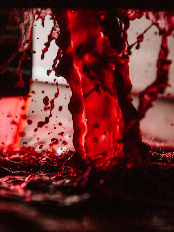 Grape juice of the Sagrantino grapes, Fratelli Pardi winery, Montefalco, Umbria