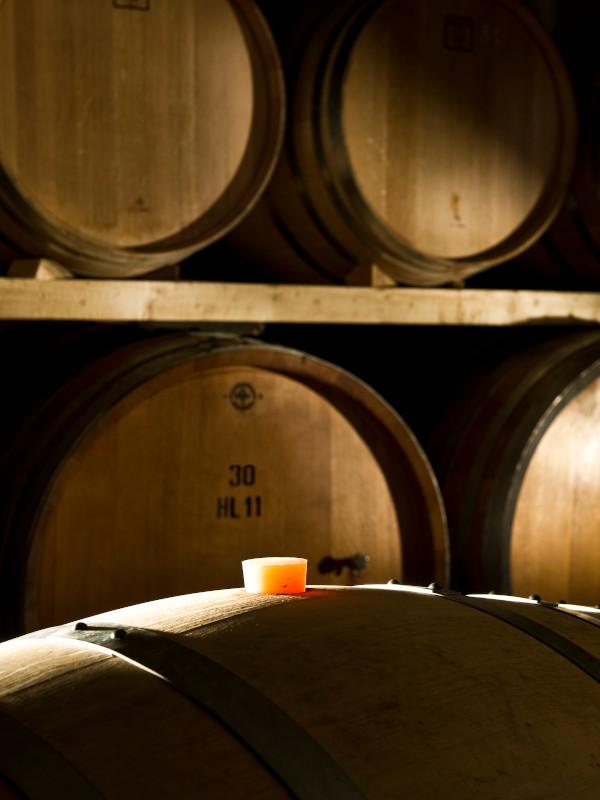 Oak barrels in the wine ageing room Le Morette winery, Lugana DOC, Veneto, Italy
